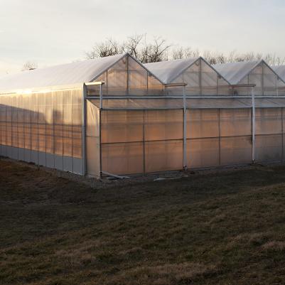 Botany Greenhouse