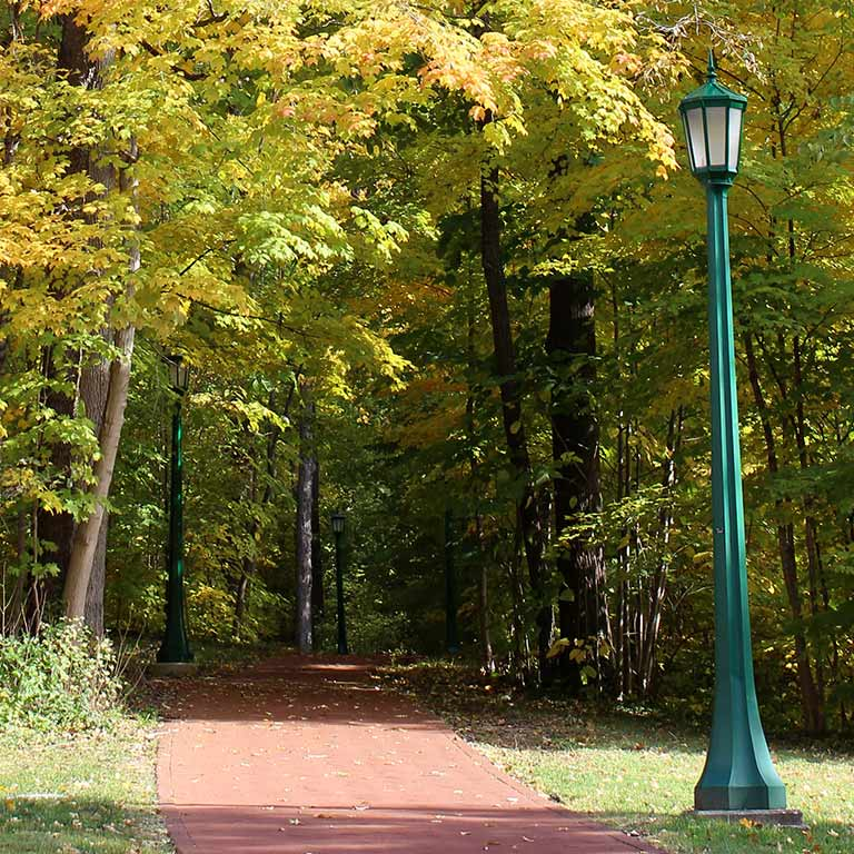 A walking path within Dunn's Woods on the IU Bloomington campus